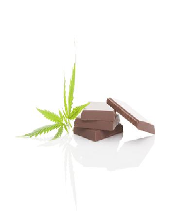 CBD Chocolate
